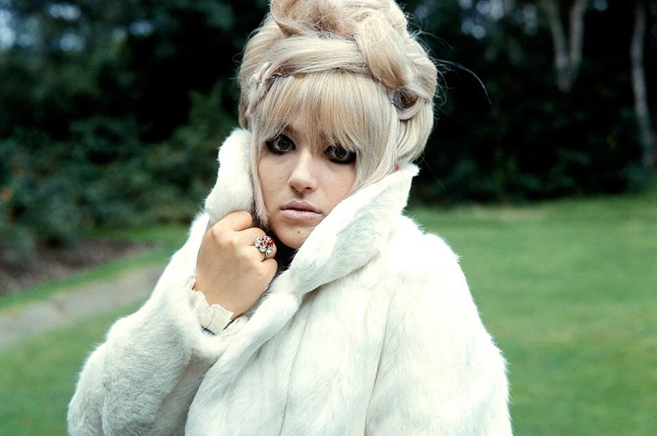 Twinkle in fur coat